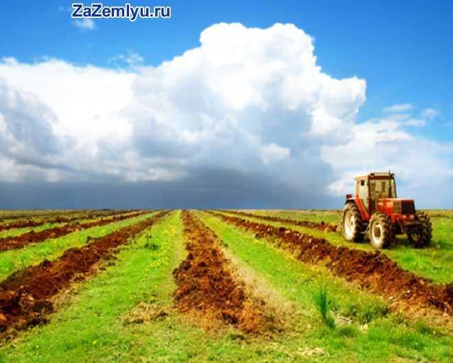 Обработка поля трактором