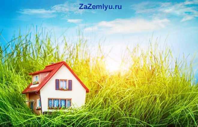 Миниатюрный дом, высокая трава
