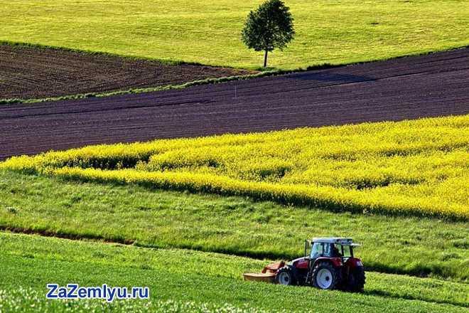 Трактор обрабатывает сельскохозяйственное поле