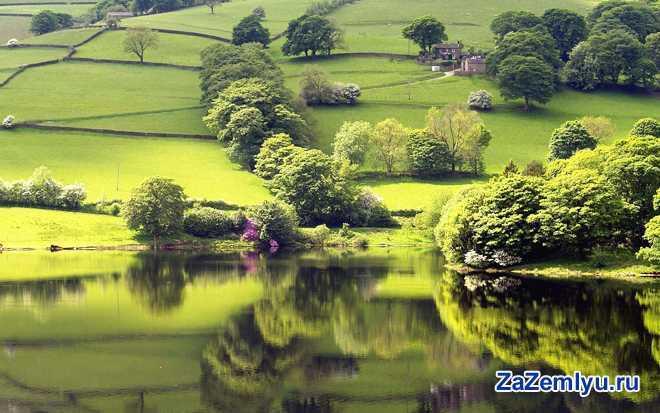 Зеленые луга, речка