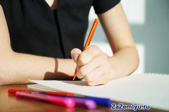 Девушка в черной блузке пишет завяление