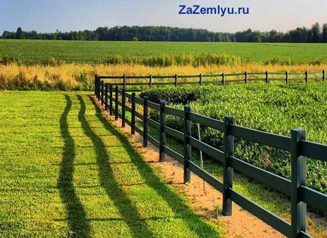Огород за деревянным забором
