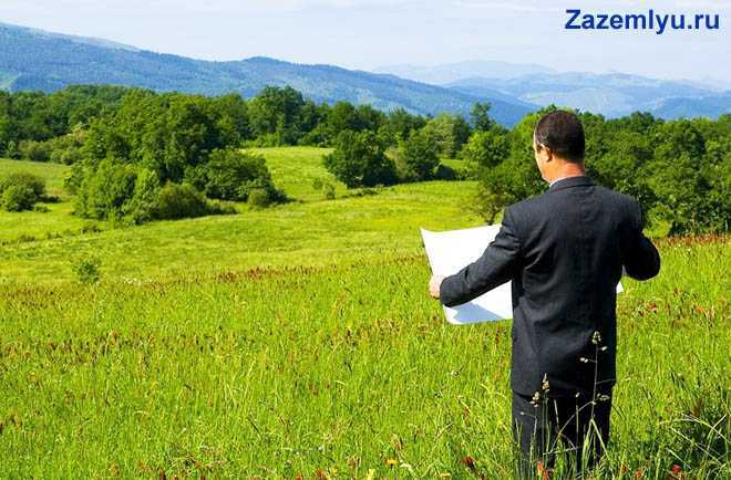 Мужчина стоит с картой в зеленом поле