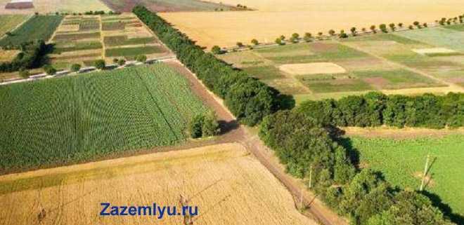 Агропромышленные поля