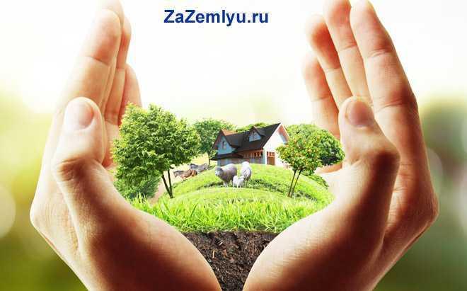 Руки человека держат земельный участок