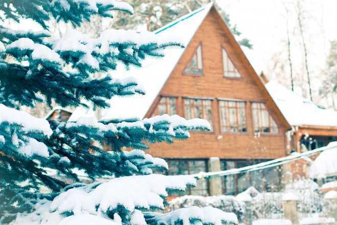 Дачный дом, ель, зима