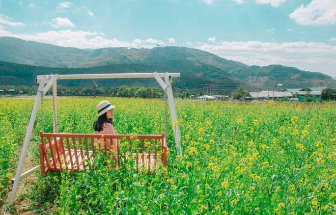 Девушка сидит на качелях в поле