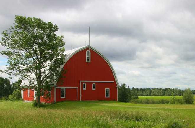 Дачный дом в поле