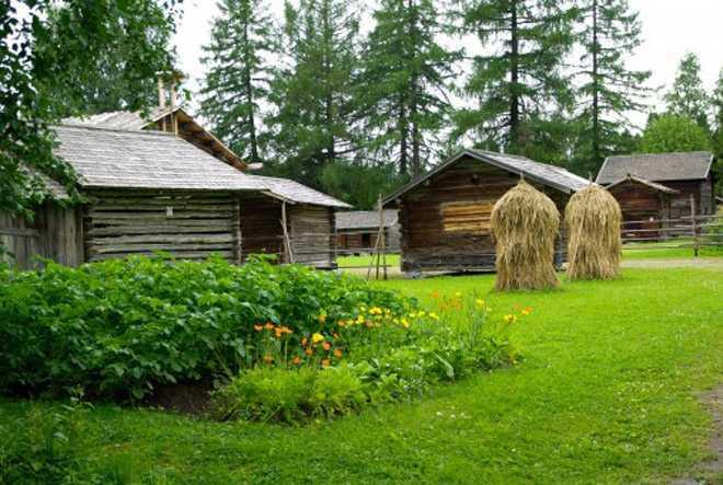 Деревянные постройки на дачном участке