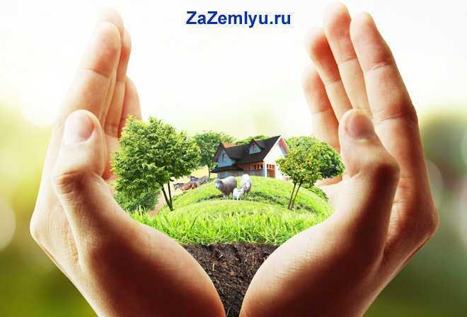 В руках человека земельный участок с домом и домашними животными