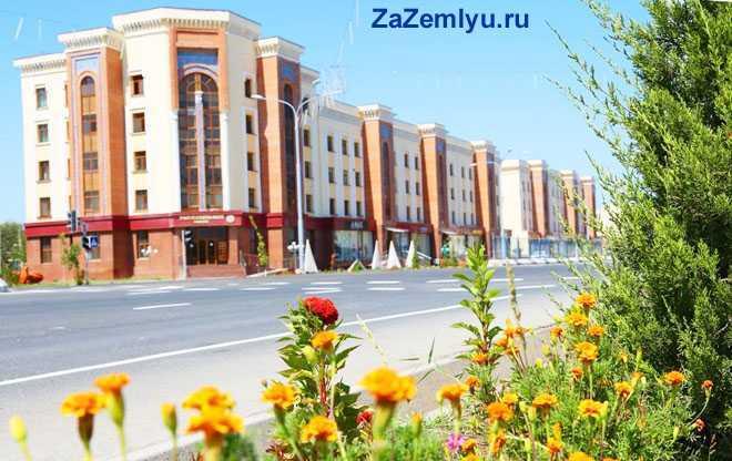 Клумбы цветов на фоне многоэтажных домов