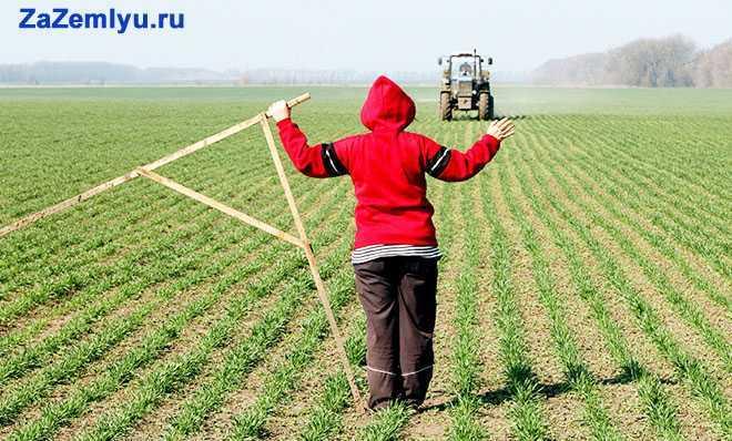Весенние полевые работы
