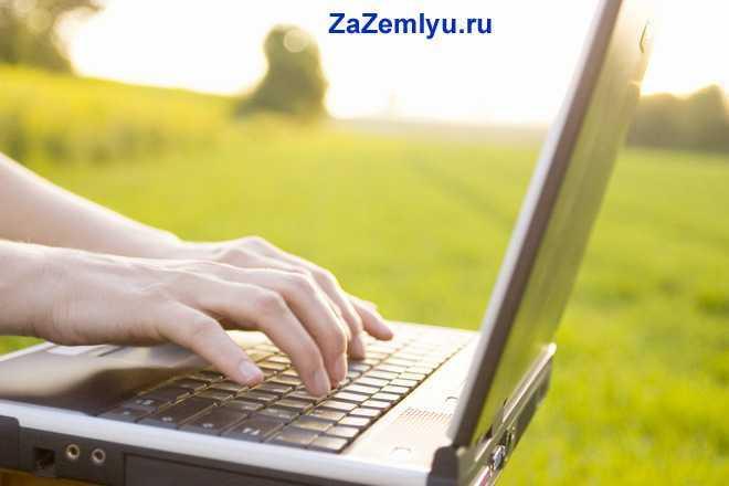 Человек печатает на ноутбуке на природе