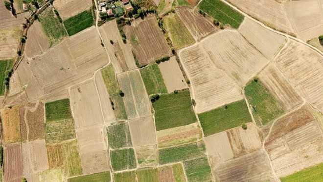 Земельный участок, деленный на доли, вид сверху