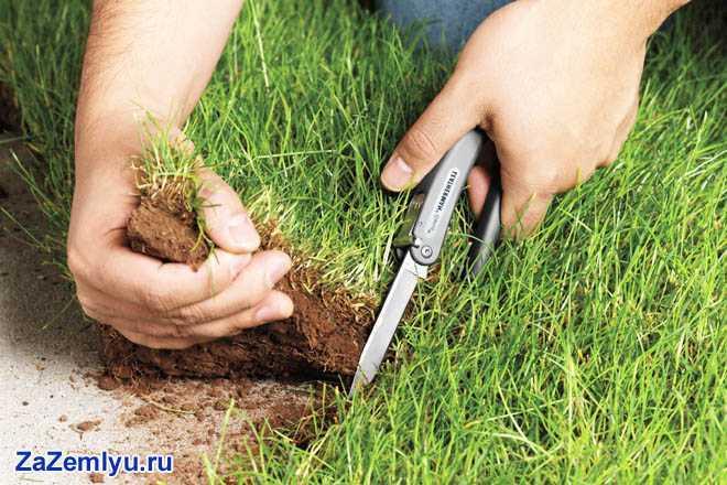 Срезка слоя земли с травой