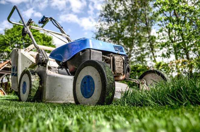 Газонокосилкой стригут траву