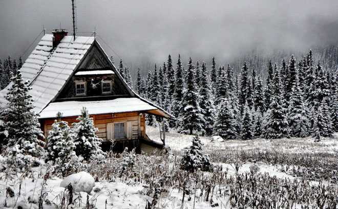 Зимний лес, изба