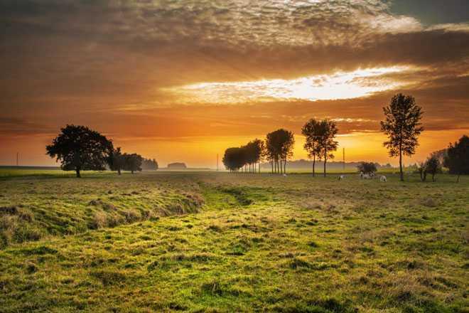 Закат солнца, лес, луг