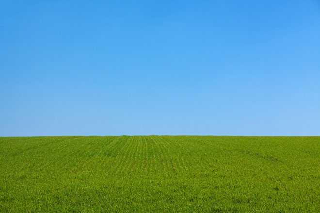 Горизонт, трава, небо