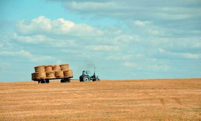 Сбор сена на поле трактором