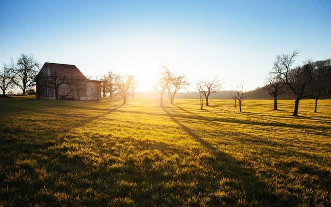 Зеленое поле, дачный дом