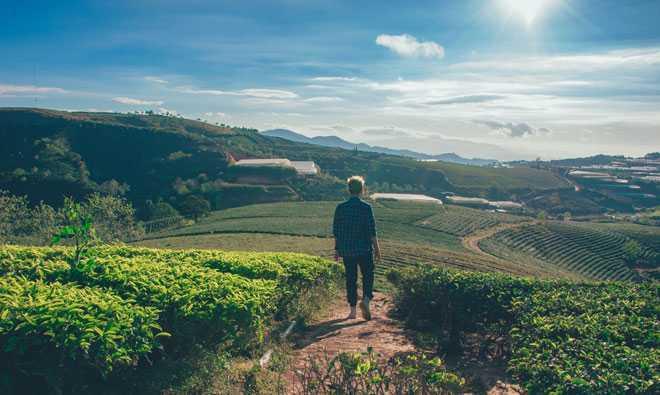 Мужчина гуляет по земельному участку