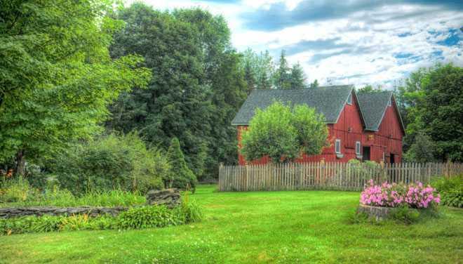 Деревенские дома, летняя листва