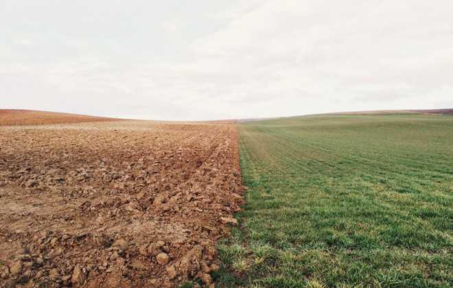Распаханное поле