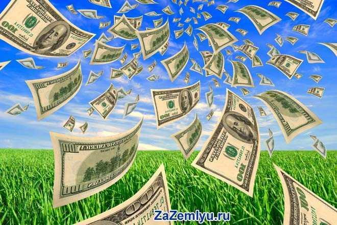 Доллары разлетелись на земле и небе