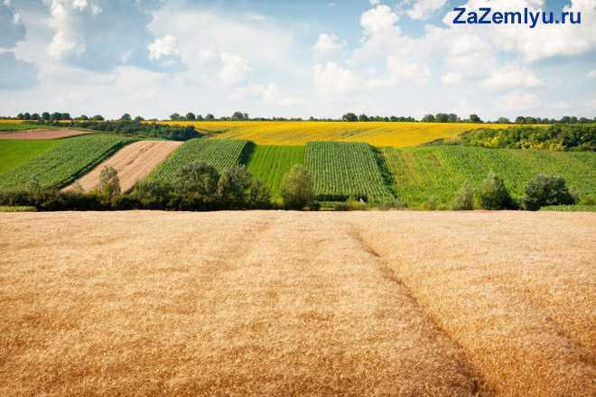 Земли в сельскохозяйственном владении