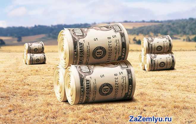 Деньги в стоге сена