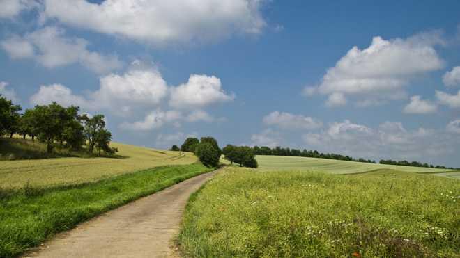 Зеленые луга, дорога, облака в небе