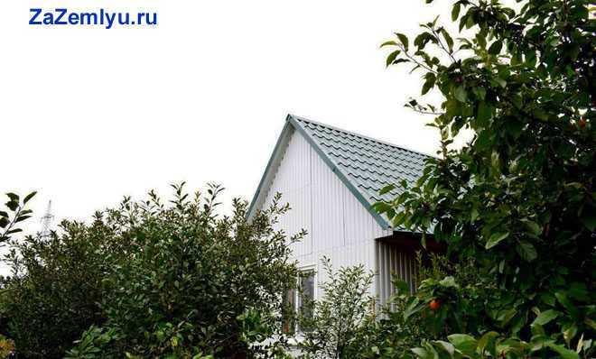 Дачный дом, деревья