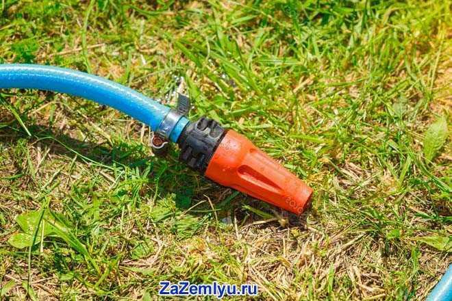 Садовый шланг с лейкой на траве