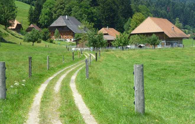 Частные дома, проселочная дорога