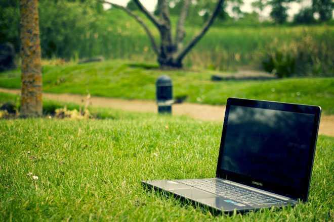Ноутбук на газоне