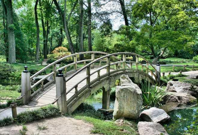 Декоративный мостик в парке