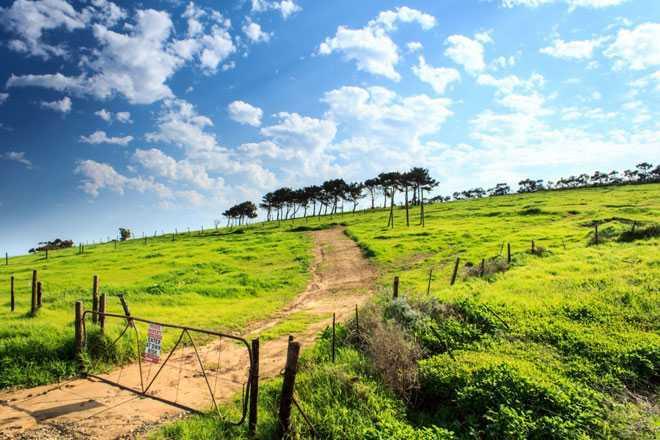 Холм, дорога, ограда
