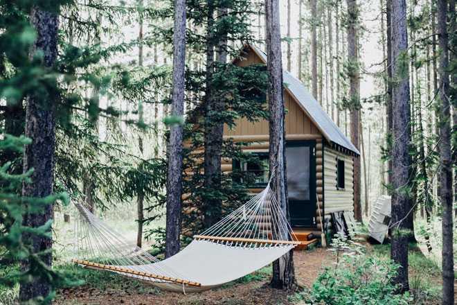 Гамак, домик, лес