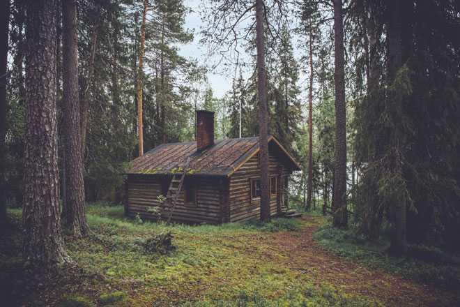 Дом в лесной местности