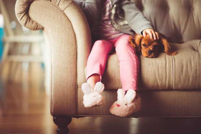 Девочка сидит с собачкой на диване
