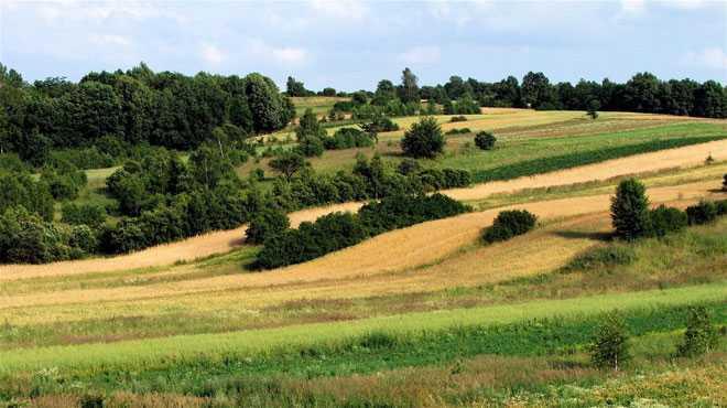 Сельскохозяйственные угодья