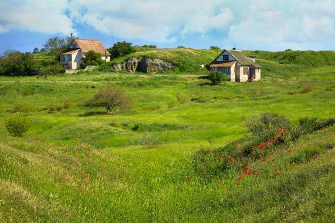 Частные дома, зеленые луга, лето